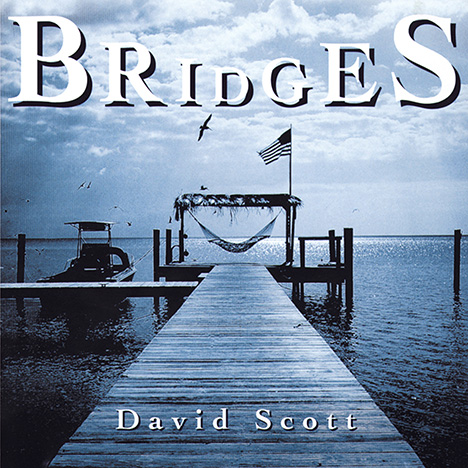 Bridges by Scott, David